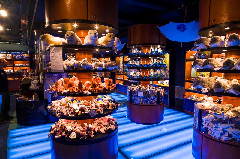 Il negozio dell'acquario