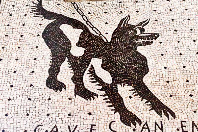 Il mosaico di un cane alla catena