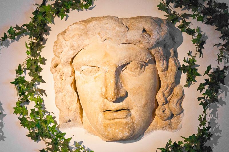 Il volto di Medusa,