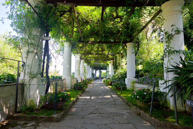 Il pergolato di Villa San Michele