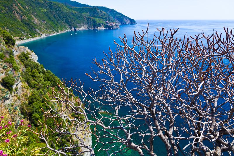 La costa del mar ligure delle Cinque Terre