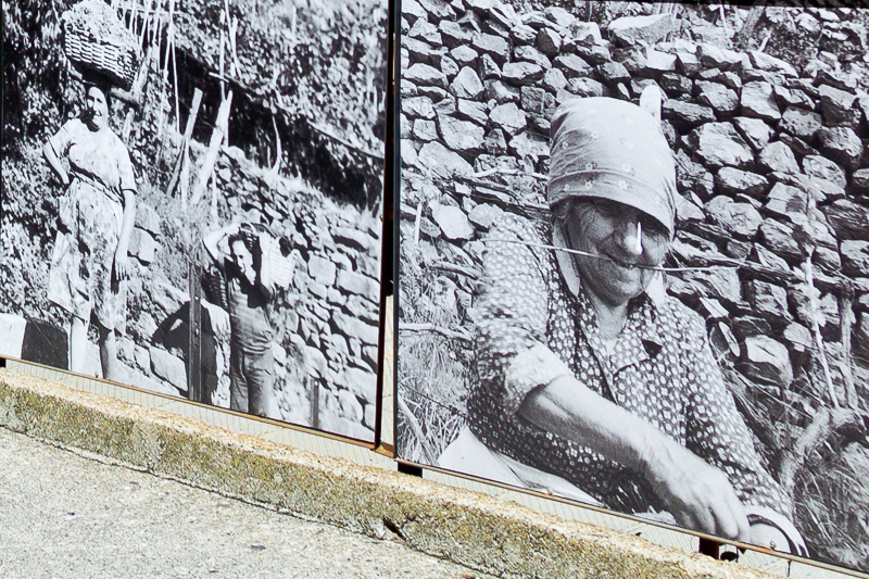 Alcune fotografie in bianco e nero, a lato di una ringhiera