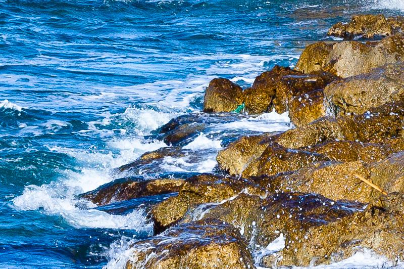 Gli scogli del mare adriatico