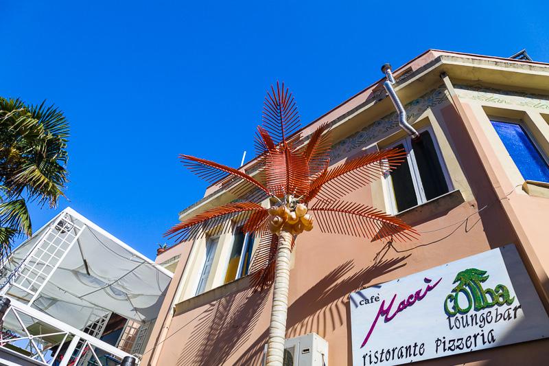Un albero di palma finto
