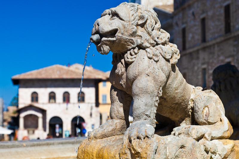Il leone della fontana di Giovanni Martinucci